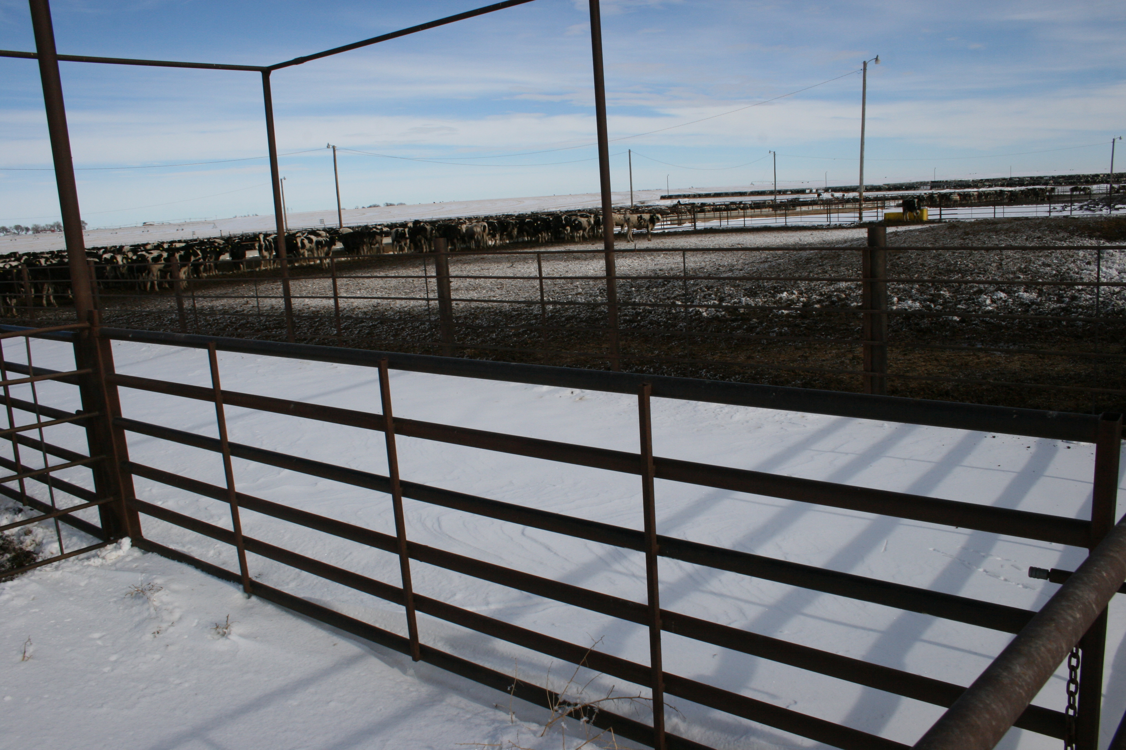 image of Weiss Master cattle fencing