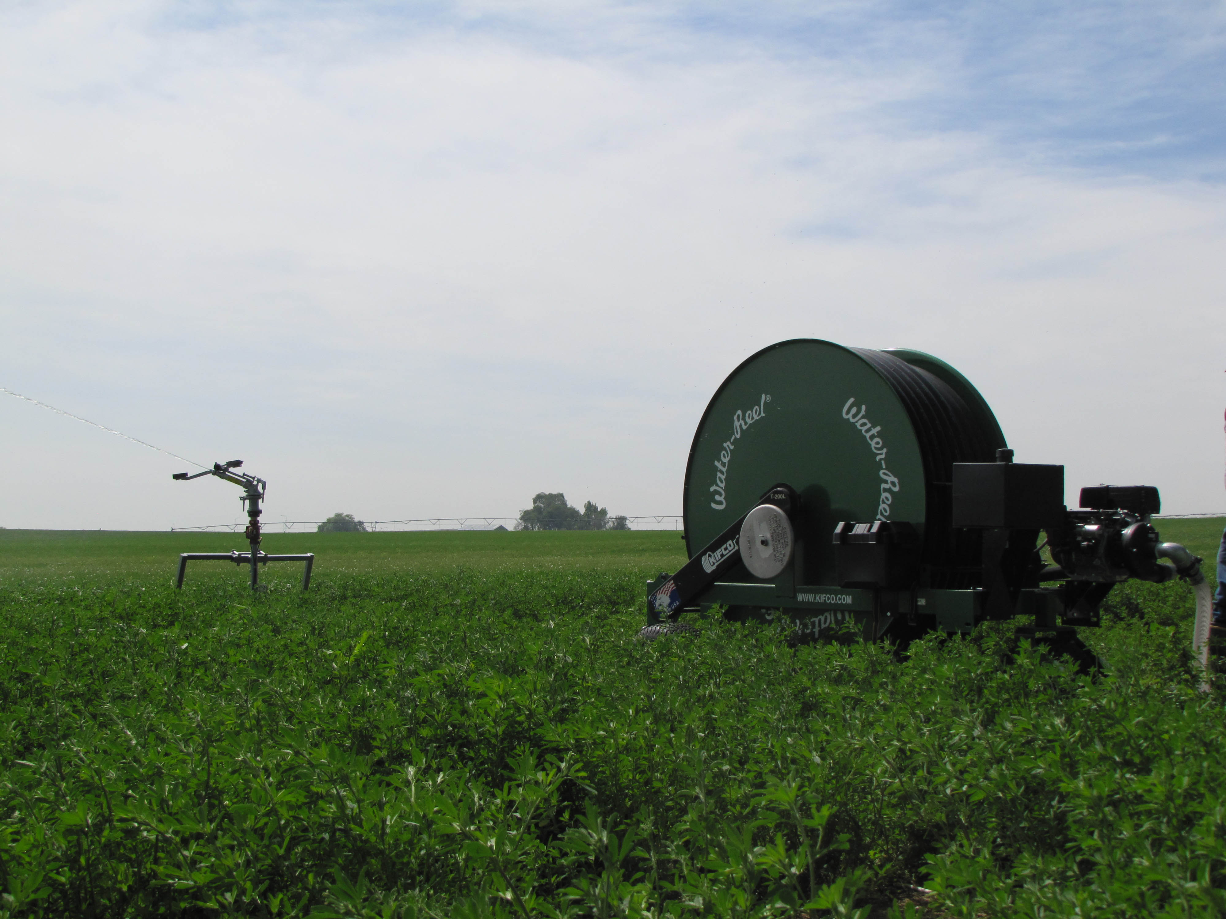 image of ag-rain water-reels b-series performing field irrigation